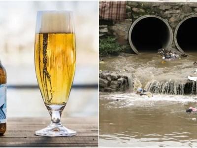 下水リサイクルビールで水問題解決