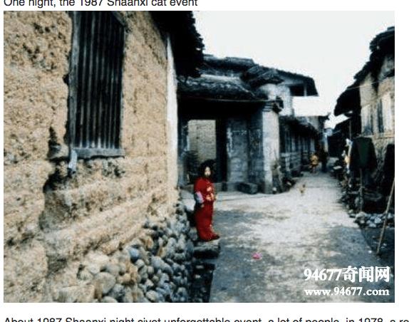 一晩で村人全員が消えた中国の夜狸猫事件