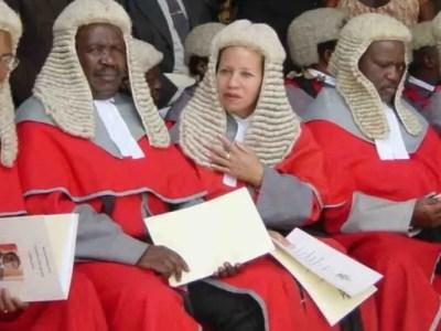 ジンバブエの高級カツラ大量購入疑惑