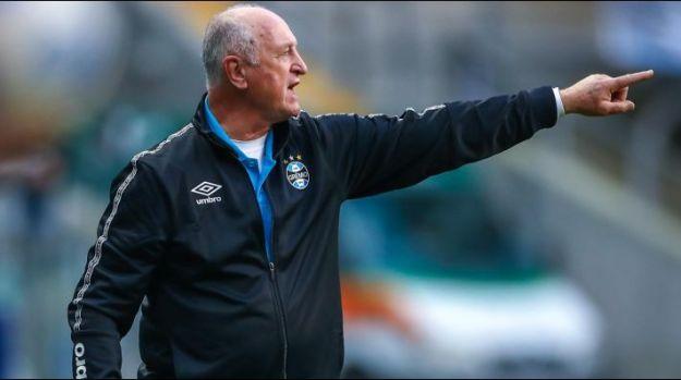 Felipão: quer um goleiro experiente (Foto: Lucas Uebel/Grêmio/Divulgação)