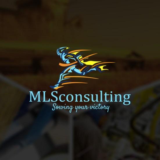 mlsconsulting.com.br