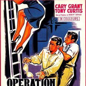 Poster do filme Anáguas a Bordo