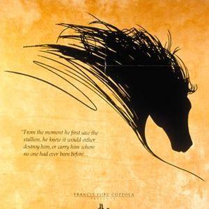 Poster do filme Cavalo Negro