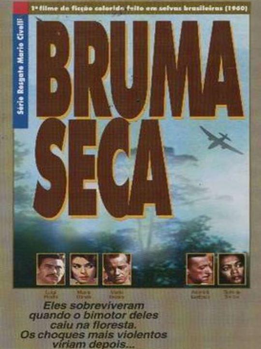 Poster do filme Bruma seca