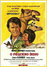 Poster do filme O pequeno índio