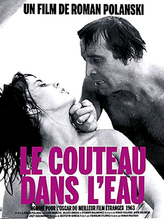 Poster do filme A faca na água