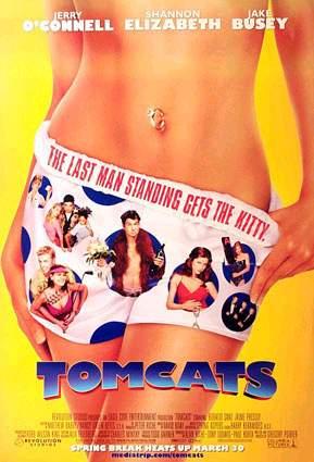 Poster do filme Gatos Numa Roubada