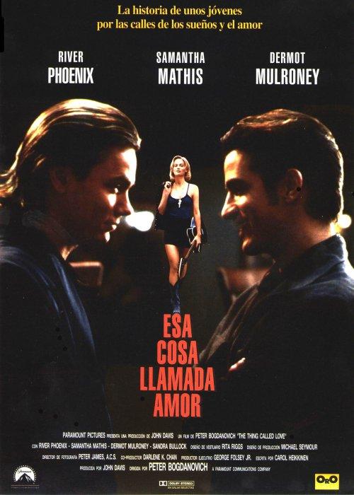 Poster do filme Um Sonho, Dois Amores