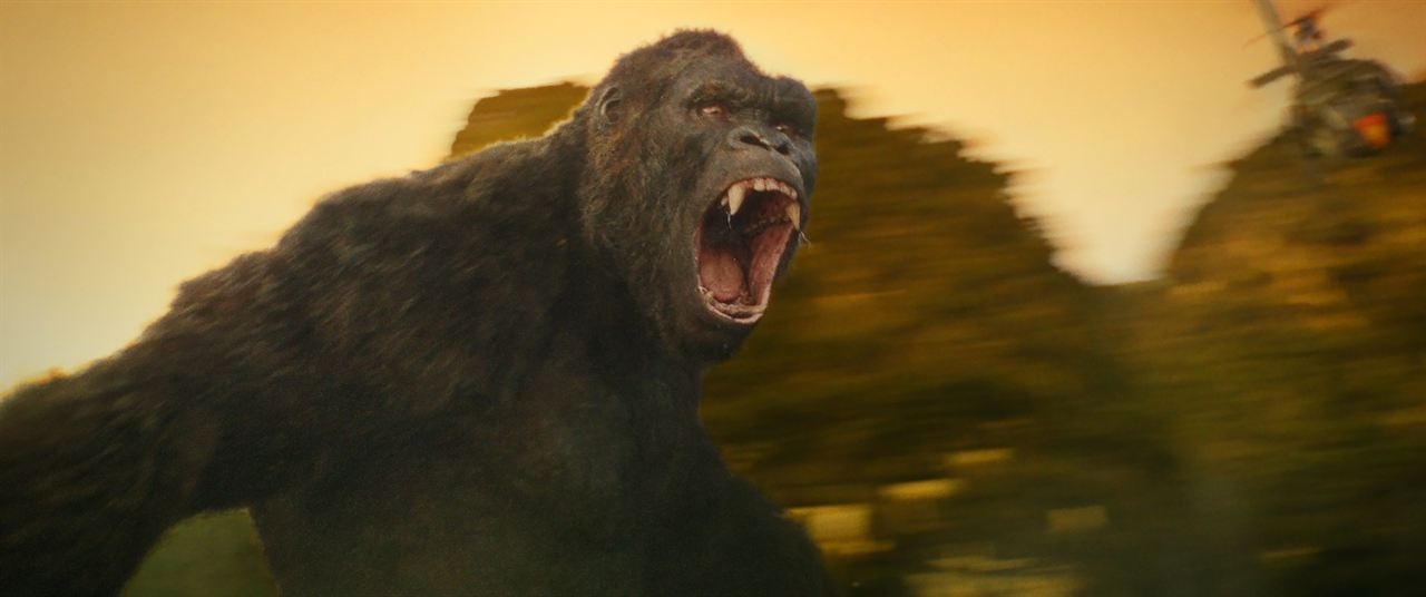 Kong: A Ilha da Caveira : Foto