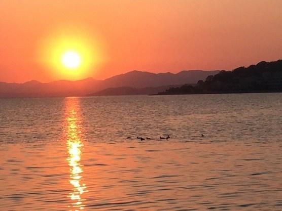 宍道湖の夕焼け&水鳥