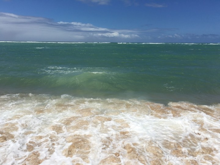 diana-viaja-praia-do-gunga-alagoas.jpg