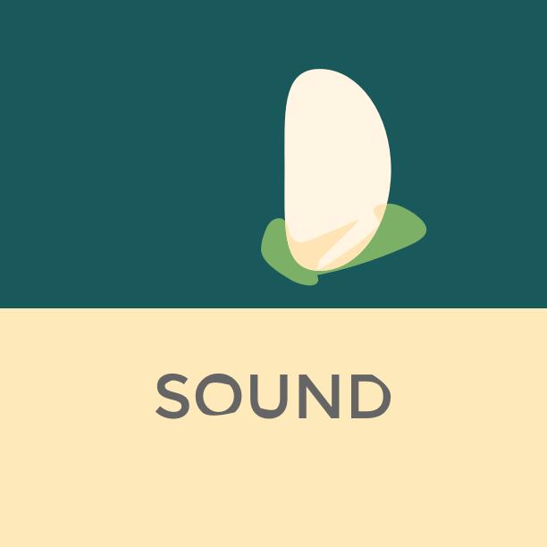 [Electronic] Sound