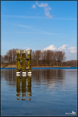 Spiegeling / Reflections