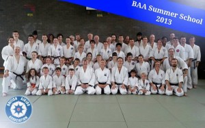 Group picture from the BAA Summer School 2013