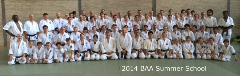 2014 BAA Summer School