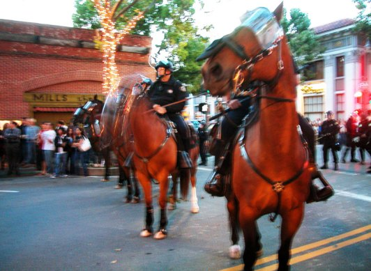 Animals on Horses