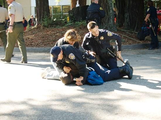 arrest_11-7-07