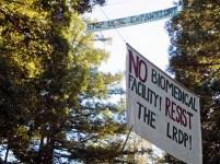No Biomedical Facility