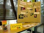 arboretum_1-31-08