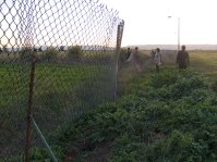 fence_3-30-08