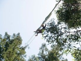 tree-sitter_6-2-08