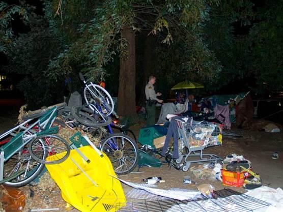 cart-camp_3_8-7-10