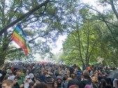 peace-flag_4-20-11