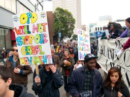 global-movement_11-19-11