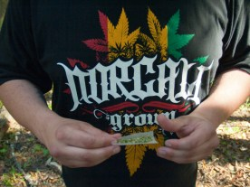 NorCal Grown Cannabis