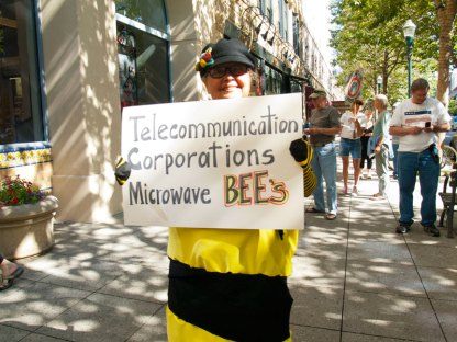 Telecommunication Corporations Microwave Bees