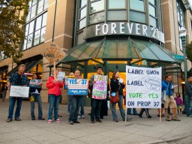 label-gmos-yes-prop-37_7_8-24-12