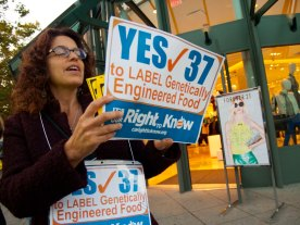 label-gmos-yes-prop-37_8_8-24-12