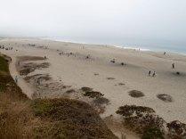 Seabright Beach in Santa Cruz, California