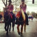 Kraftur — Northern California Icelandic Horse Club