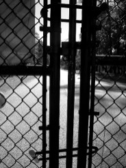 fence2_11-22-03