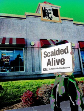 Scalded Alive
