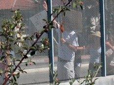 through-fence_9-15-04