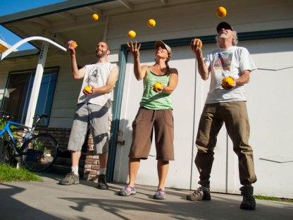 Santa Cruz Fruit Tree Project Jugglers