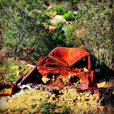 When I first came up here, this old station wagon on the China Flat Trail was in much better condition.