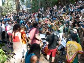 Music in the Forest on 420 at UC Santa Cruz