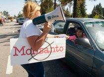 Distributing Flyers for GMO-Free Santa Cruz