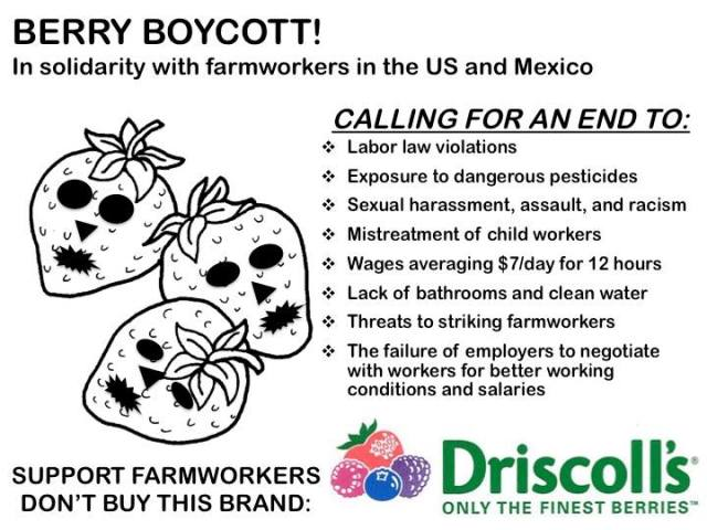 A flyer asks shoppers to boycott Driscoll's in solidarity with farmworkers in the US and Mexico.