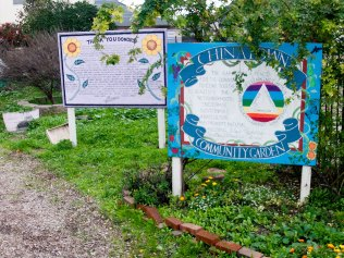 The Service Learning Institute of California State University Monterey Bay developed a public green space and community garden on an abandoned lot, replacing urban neglect with beauty, nutritious food, and employment. The Garden was established by dedicated local marginalized individuals through a job-training program started in 2006. This 24,000 sq. ft. site, the Chinatown Community Garden, is where people come to grow food.