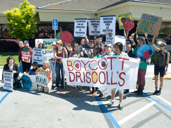 Women Say Boycott Driscoll's