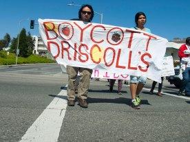 Boycott Driscoll's