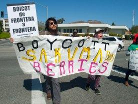 Boycott Sakuma Bros Berries
