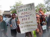Community Gardens Heal, Protect, and Feed