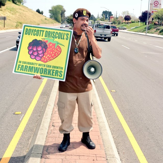 """Michael Garcia of the Watsonville Brown Berets, standing on the median of Main Street in Watsonville, California, displays a sign advocating, """"Boycott Driscoll's In Solidarity with San Qunitín Farmworkers."""" April 2, 2016. Photo by Bradley Allen."""