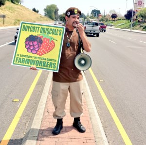 "Michael Garcia of the Watsonville Brown Berets, standing on the median of Main Street in Watsonville, California, displays a sign advocating, ""Boycott Driscoll's In Solidarity with San Qunitín Farmworkers."""