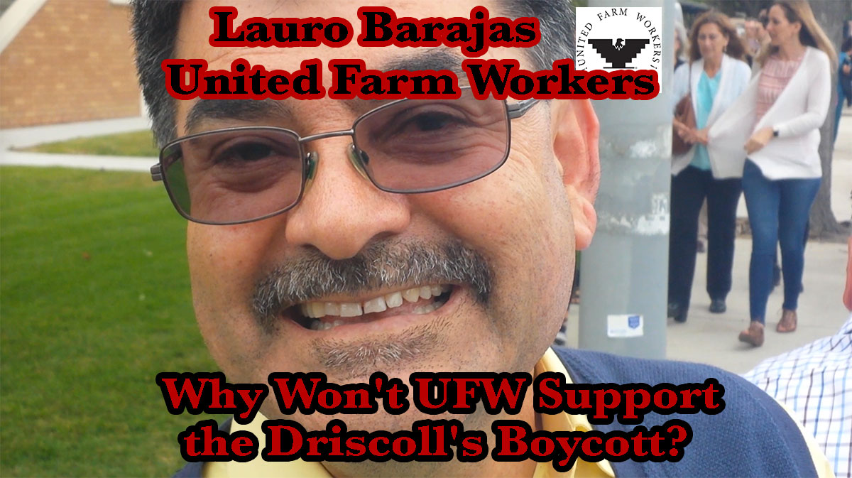 Lauro Barajas, Vice President of the United Farm Workers, was asked why the UFW will not support the Driscoll's Boycott. Barajas refused to answer. Salinas, California. May 25, 2016.